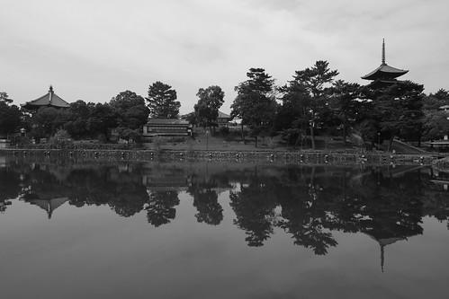 05-08-2020 Nara vol02 (9)