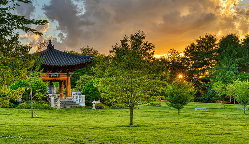 meadowlark virginia bell koreangarden landscape sunset trees