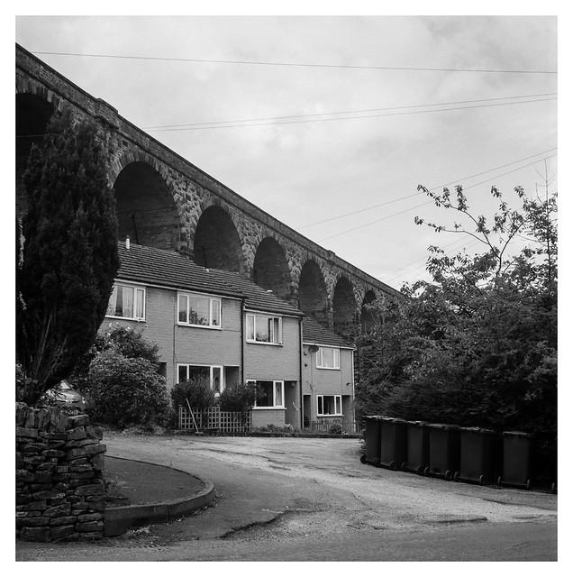 Distinctive suburban scenes