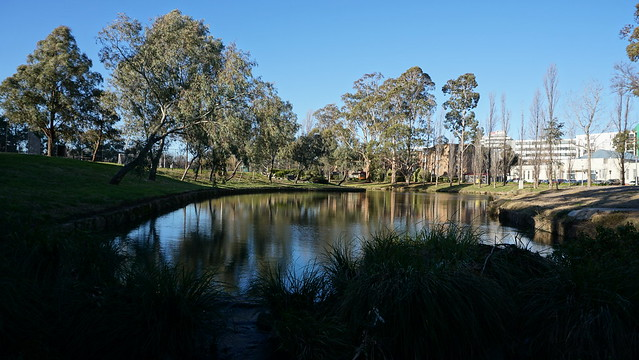 Reflections on the creek pond