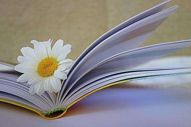 flower in my book