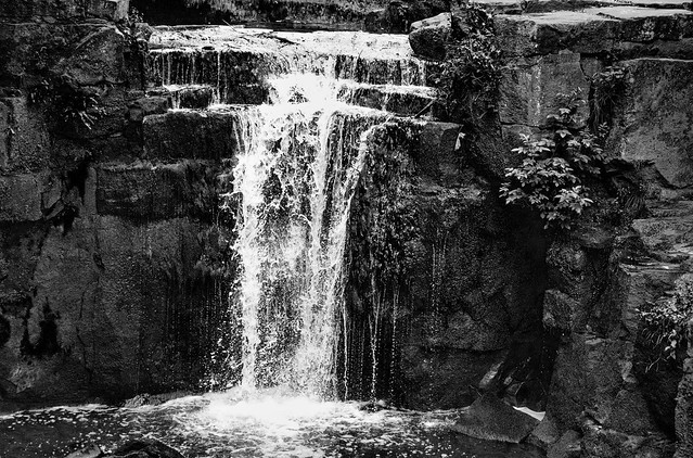 Waterfall at Jesmond Dene  IMG_3434II