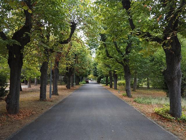 Le Parc départemental de la Boucle de Montesson