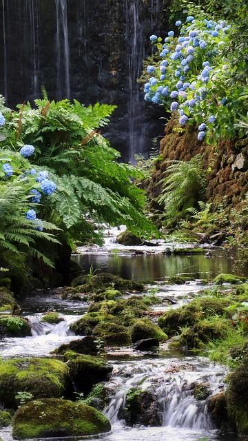 Down stream