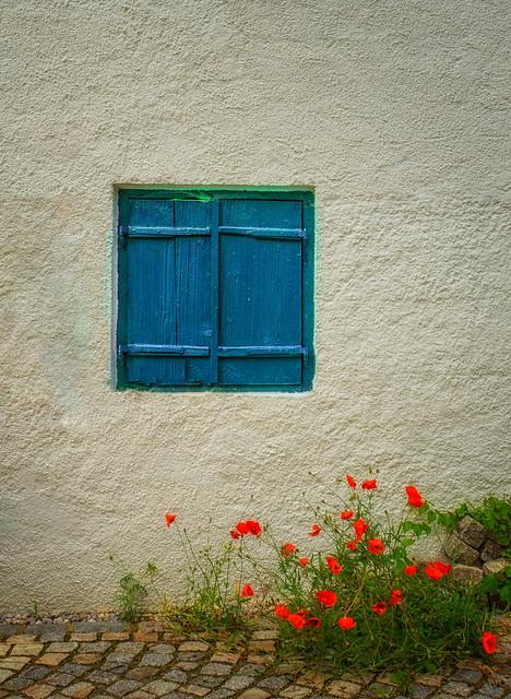Happy Window Wednesday!