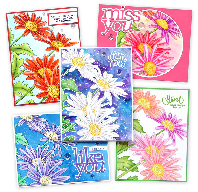 Daisy Background stamp cards together