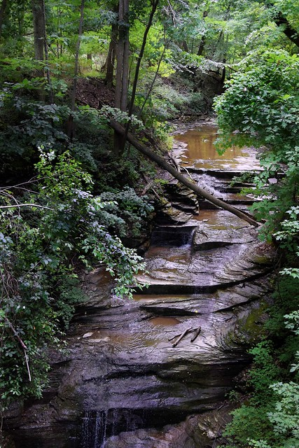 The Beautiful Gorges Of The Finger Lakes