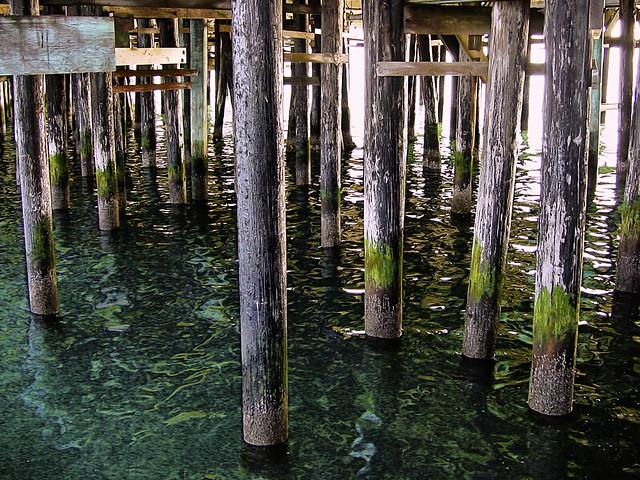 Underneath the Santa Cruz Pier