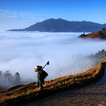 CHINA- Rice Terraces in Southern Mountainous and Hilly areas
