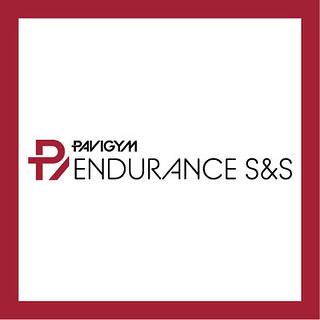 Endurance S&S logo
