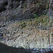 Falaise dans les gorges du Bras de La Plaine (détail)