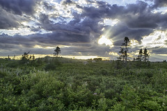 West Dover Provincial Park