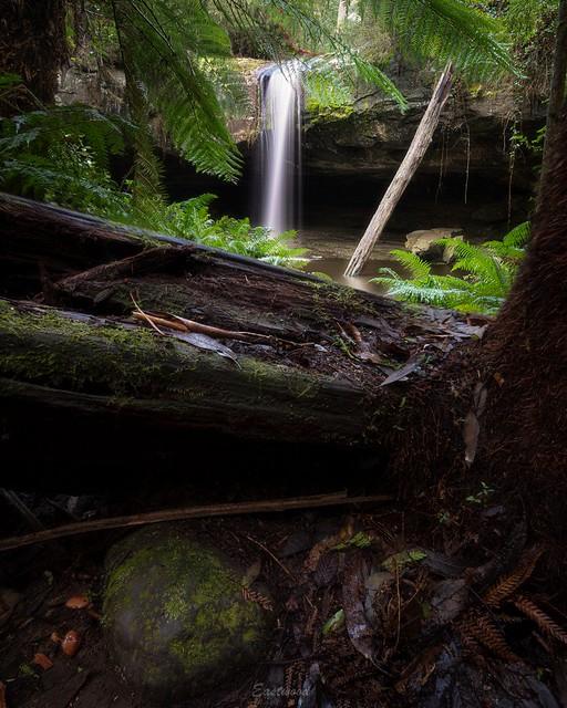 Lower Kalimna Falls 1