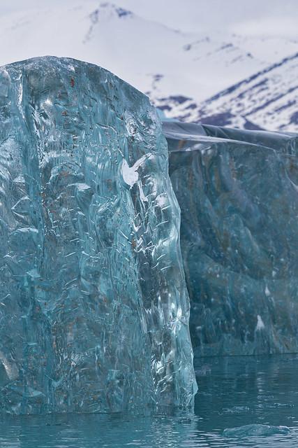 Arctic Ice ©2016 Lauri Novak