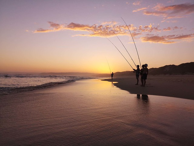 using rods at dawn