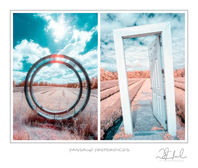 Passage Preferences - Tych