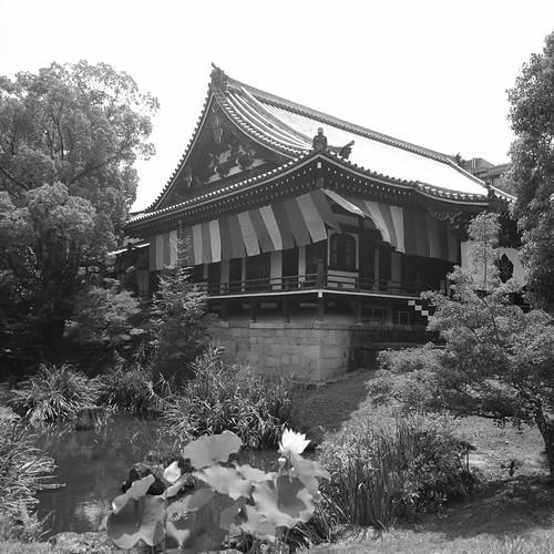 06-08-2020 Kyoto vol02 (67)