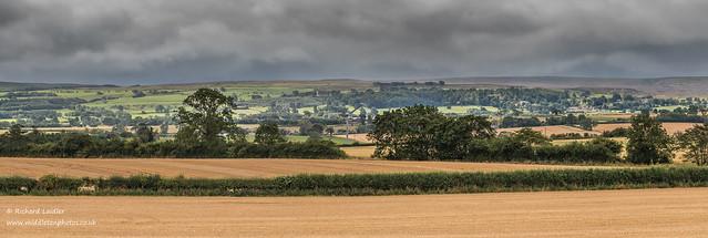 Newsham to Barningham Bright Interval Panorama Aug 2020