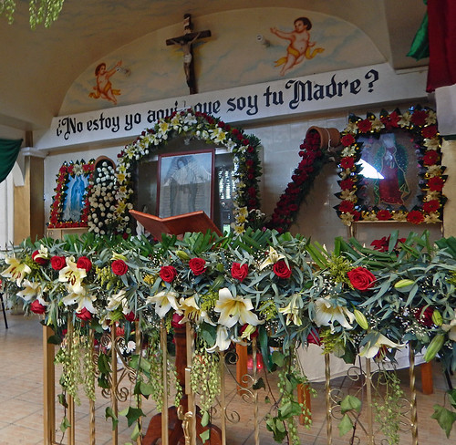 A shrine decorated with flowers including the impossible red roses in December that the Virgen de Guadalupe gave to the peasant Juan Diego as proof of her existence