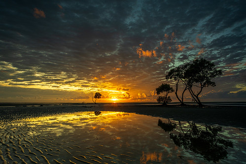 beachmere moretonbayregionalcouncil queensland australia canon canoneosr eosr canonef1740mmf4l nisi nisifilters sunrise mangrove water reflections sand manfrotto dawn light beach
