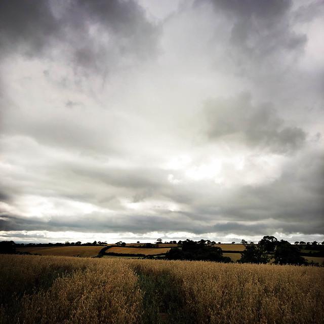 Summer Skies 2020 day 20 - Raddon.jpg