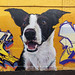Awes Port Melbourne 2020-07-06 (5D4_5693)