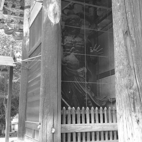 07-08-2020 Nara vol02 (21)