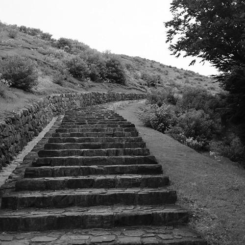 07-08-2020 Nara vol01 (17)