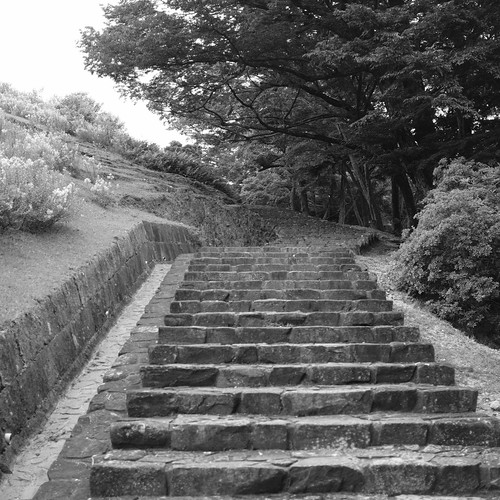 07-08-2020 Nara vol01 (15)