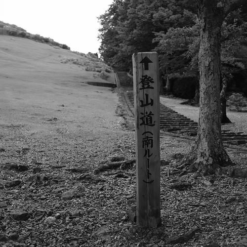 07-08-2020 Nara vol01 (12)