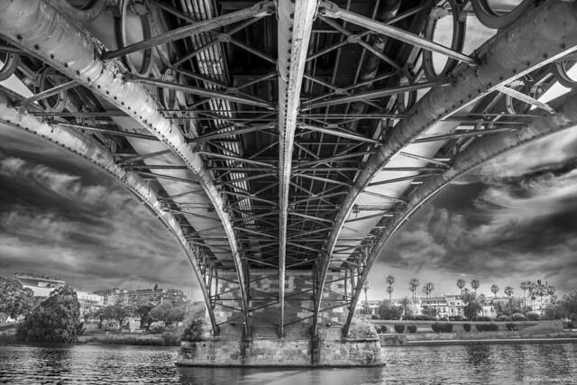 Under the bridge - Bajo el puente