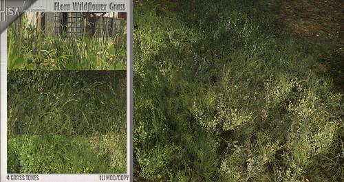 FLora Wildflower Grass