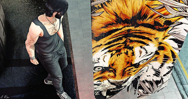 Tiger Soul 🐯