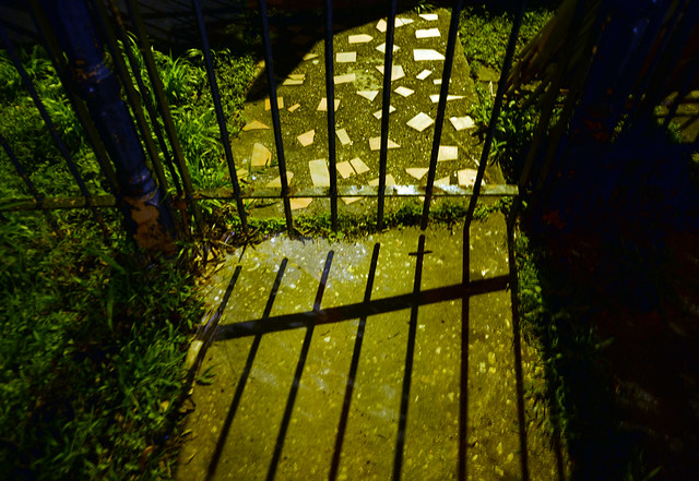 New Orleans Fence at Night