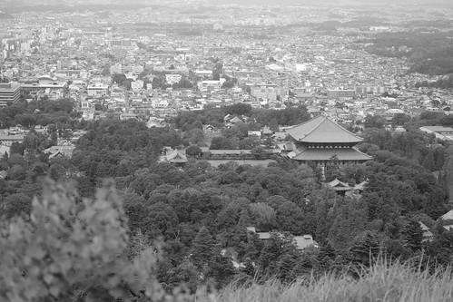 07-08-2020 Nara vol02 (10)