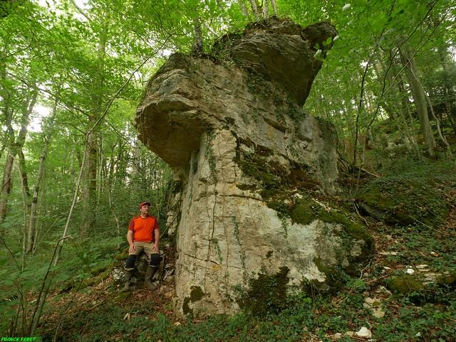 Monolithe du Bois des Essarts - Malans