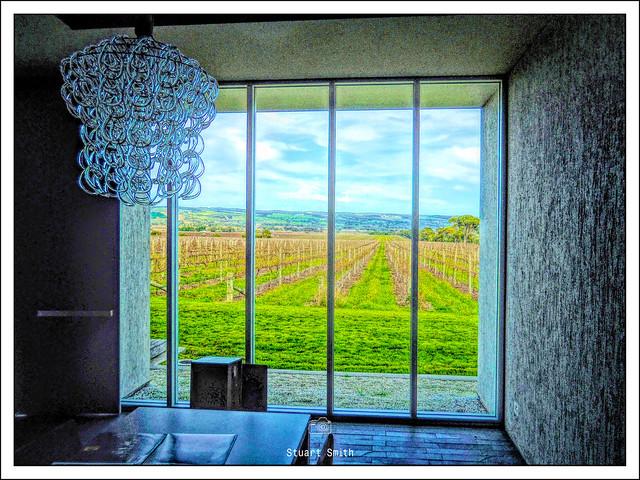 Tasting Room. Primo Estate Winery, McMurtrie Road, McLaren Vale, South Australia
