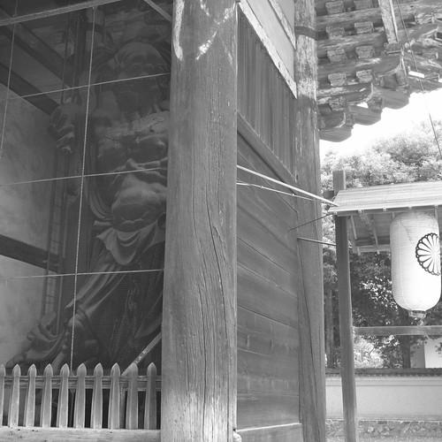 07-08-2020 Nara vol02 (22)