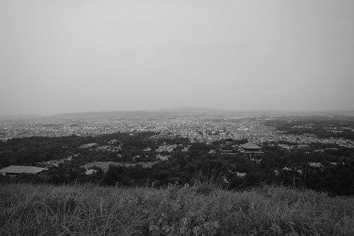 07-08-2020 Nara vol02 (12)