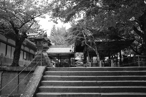 07-08-2020 Nara vol01 (34)