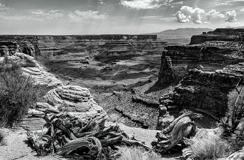 Wonders of Canyonlands - Explore