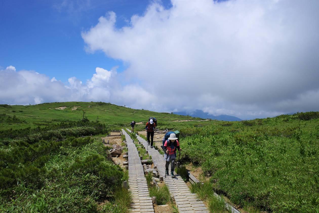 太郎平の木道路