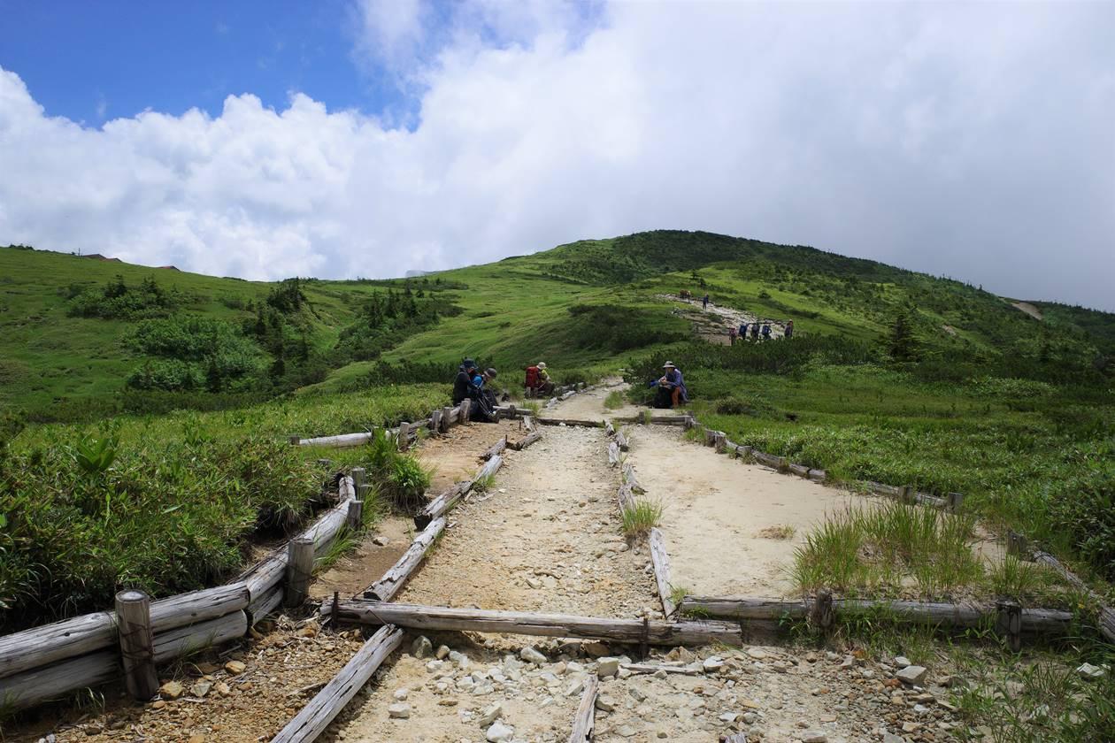 夏の薬師岳登山 太郎平の湿原風景