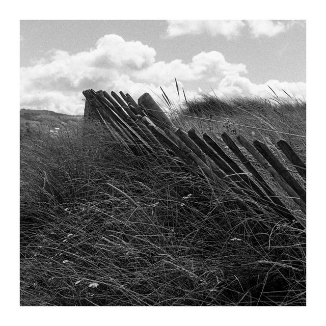 Prestatyn dunes.....