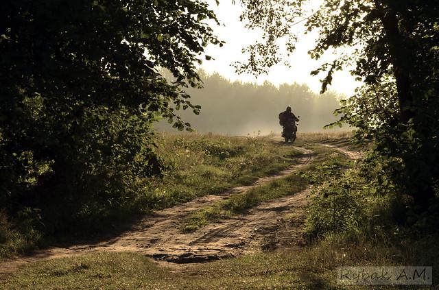 Leisurely morning biker.