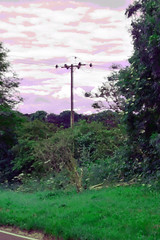 MyTelegraphPole_painted2