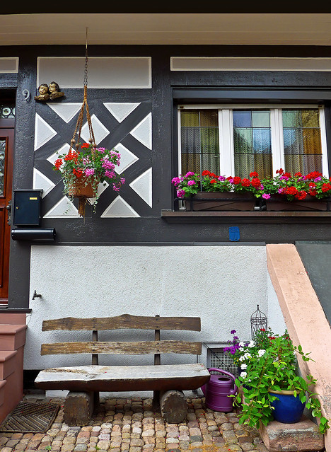 photo - Geraniums & Bench, Gengenbach