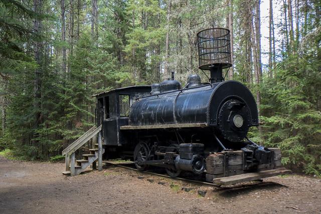 APP - Logging Museum
