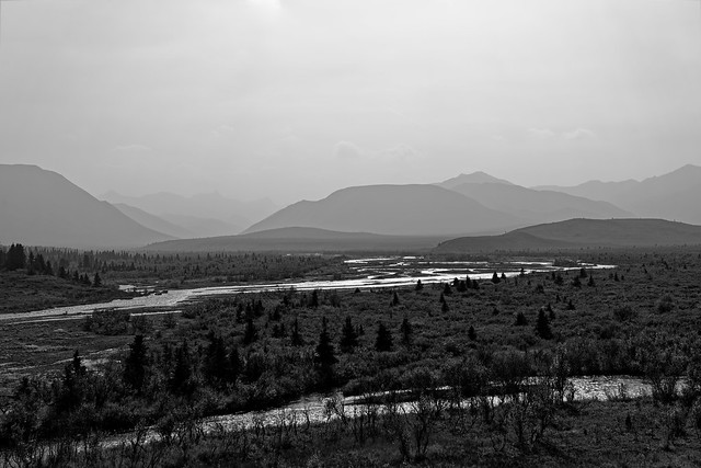 A Look Across the Savage River and Mountains Beyond (Black & White, Denali National Park & Preserve)