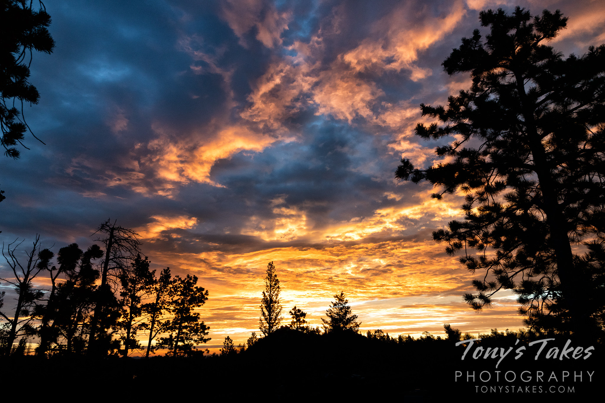A gorgeous sunrise as seen from Roosevelt National Forest in Colorado. (© Tony's Takes)